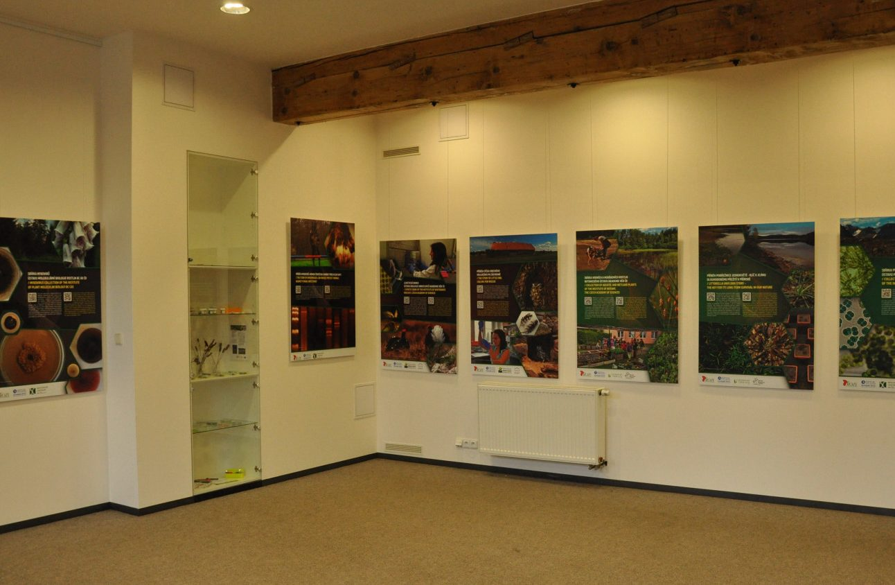 Ausstellung: Stories of the Biological Collections of the CAS in Průhonice Castle 2017 – 2018